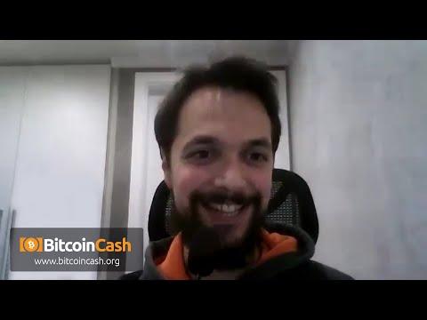 A Descriptive Definition of Memetic Life in the Context of Bitcoin Cash