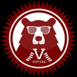 voytek-bear-coin